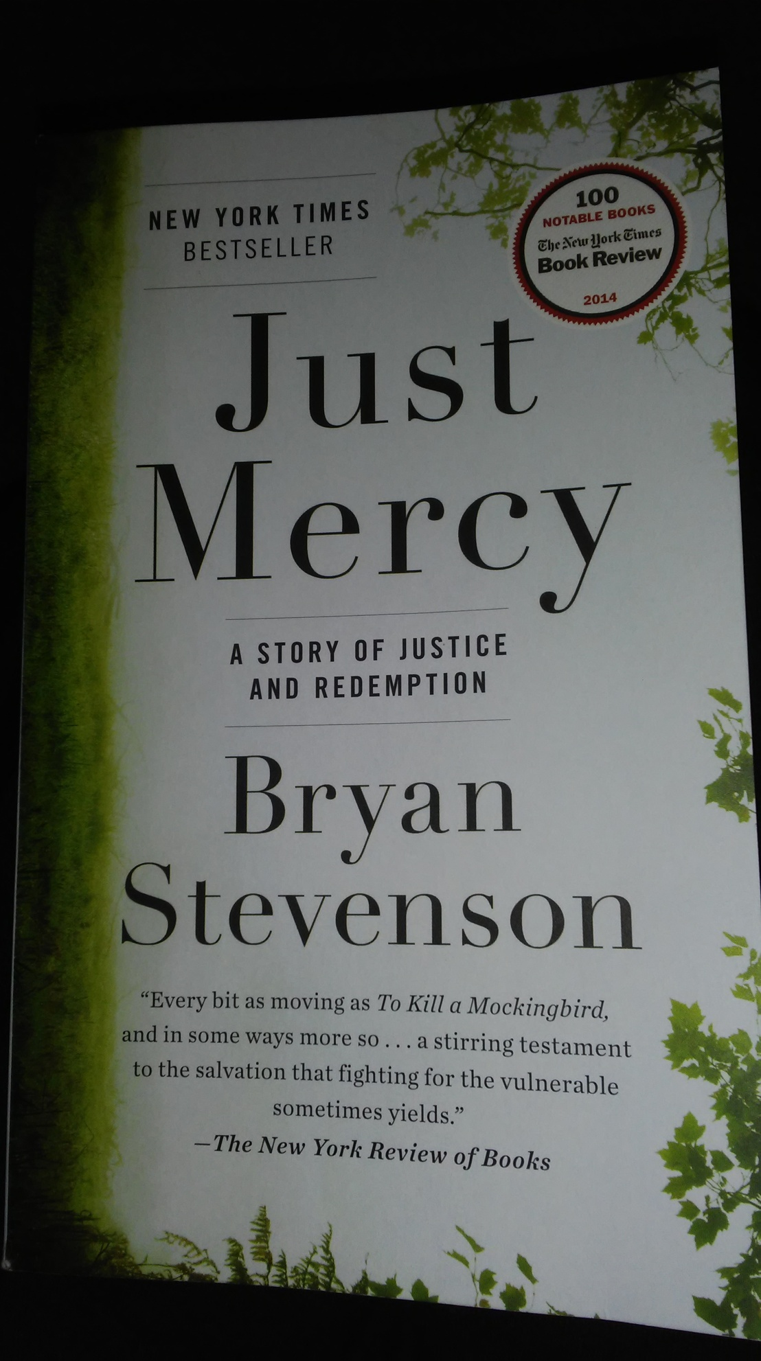 Righting the Wrongs of a Wayward Justice System| BookReview